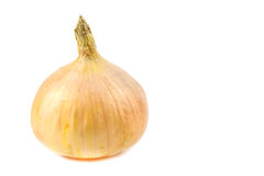 Close up yellow onions. On white background Royalty Free Stock Images