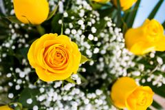 Close up of a yellow rose on a bouquet of flowers. Before a wedding day stock photo