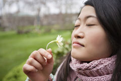 Close-up of a young Asian woman smelling flower in park Stock Photography
