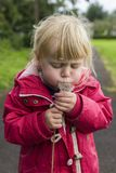 A small child blowing on a dandelion royalty free stock photography