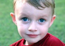 Close up young boy Royalty Free Stock Photo