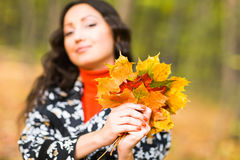 Close-up young brunette woman with maple autumn leaves.  Royalty Free Stock Photography