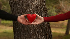 Close up of young couples hands lifting a heart stock video footage