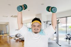 Young fat man lift dumbbells in the gym center stock image