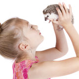 Close up of a young girl holding her pet hedgehog. Up in the air on an isolated white background Stock Photos