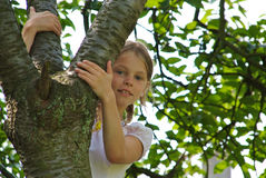 Close-up of young girl in a tree Royalty Free Stock Photos