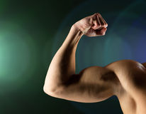 Close up of young man flexing and showing biceps Royalty Free Stock Image