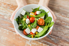 Close up of young woman hands showing salad bowl Stock Image