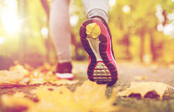 Close up of young woman running in autumn park. Fitness, sport, people, wear and healthy lifestyle concept - close up of young woman running in autumn park Stock Photography