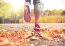 Close up of young woman running in autumn park. Fitness, sport, people, wear and healthy lifestyle concept - close up of young woman running in autumn park Stock Images