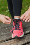 Close up of young woman tying her shoelaces Royalty Free Stock Image
