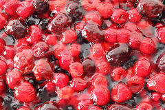 Close up of yummy dessert. With different types of berries in jelly Stock Images
