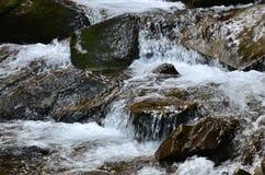 Close-upbeeld van een kleine wilde waterval in de vorm van korte stromen van water tussen bergstenen royalty-vrije stock foto's