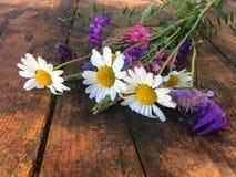Close-upfoto van boeket van weidebloemen bij zonnige dag stock afbeelding