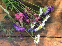 Close-upfoto van boeket van weidebloemen bij zonnige dag royalty-vrije stock afbeeldingen