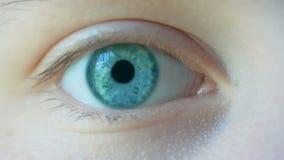 Close-upmacro die van vrouwelijk menselijk blauwgroen oog wordt geschoten stock video
