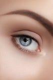 Close-upmacro van mooi vrouwelijk oog Schone huid, manier naturel samenstelling Stock Afbeelding