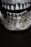 Close-upmening over de menselijke schedel Stock Afbeeldingen