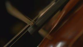 Close-upmening over violoncel in orkest stock video