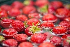 Close-upmening van aardbeien in water stock foto