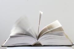 Close-upmening van een open boek Royalty-vrije Stock Afbeeldingen