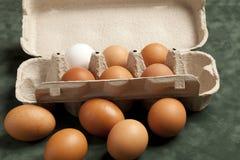 Close-upmening van ruwe kippeneieren in grijze doos, eiwit, bruin ei op groene achtergrond royalty-vrije stock afbeelding