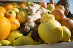 Close-upmening van verse sinaasappelen en appelenvruchten royalty-vrije stock afbeelding