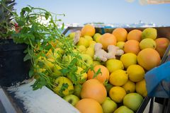 Close-upmening van verse sinaasappelen en appelenvruchten royalty-vrije stock foto's