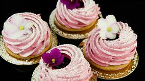 Close-uppanorama neer op kleine groep roze heemstkoekjes stock video