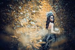 Close-upportret van Calavera Catrina in zwarte kleding De make-up van de suikerschedel Dia DE Los Muertos Dag van de Doden Hallow royalty-vrije stock afbeelding