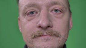 Close-upportret van de mens op middelbare leeftijd met baard en snor het letten calmly op op groene achtergrond stock footage
