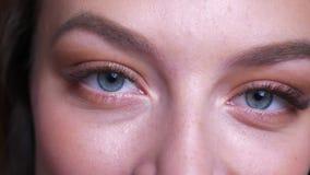 Close-upportret van mooie jonge Kaukasische vrouwelijke blauwe ogen die recht camera met het glimlachen gelaatsuitdrukking bekijk stock videobeelden