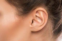 Close-upportret van vrouwelijk oor royalty-vrije stock foto's