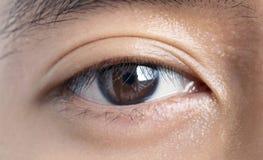 Close-ups van het Aziatische mannelijke oog van ` s Textuur van het donkere bruine oog stock foto