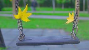 Close-upschommeling met gele bladeren die langzaam in park op de herfstdag slingeren stock video