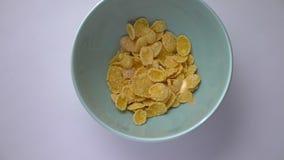 Close-upspruit van cornflakes die in een kom worden gelaten vallen Gezond en smakelijk al Amerikaans ontbijtvoedsel stock videobeelden