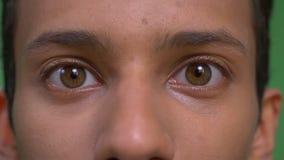 Close-upspruit van jong aantrekkelijk Indisch mannelijk gezicht met ogen die recht camera bekijken stock videobeelden