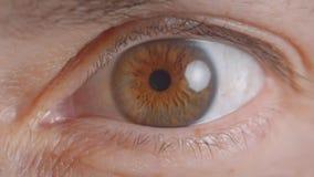 Close-upspruit van Kaukasisch menselijk bruin oog die leerling het letten krimpen angstig op in camera stock footage