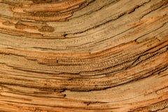 Close-uptextuur van oud hout Royalty-vrije Stock Fotografie