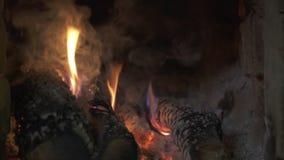 Close-upvlam van het branden van brandhout in een baksteenoven stock video