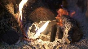 Close-upvlam van het branden van brandhout in een baksteenoven stock footage