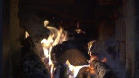 Close-upvlam van het branden van brandhout in een baksteenoven stock videobeelden