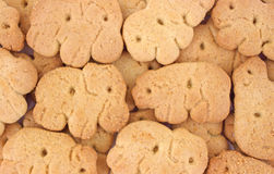 Close view of animal crackers Stock Images