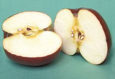 Close view of apple cut in two. Close up of two apple halves on a green background Royalty Free Stock Image