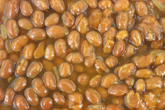 Close view of baked beans Royalty Free Stock Image