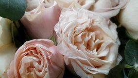 Close view of a beautiful bouquet of brides . Various flowers-peonies, roses, stems and leaves. Light romantic tones. stock video footage