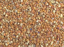 Close view of bee pollen granules Stock Photo