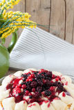 Close View Of Berry Fruits Cake Stock Images