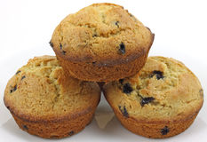 A close view of blueberry muffins Royalty Free Stock Photos