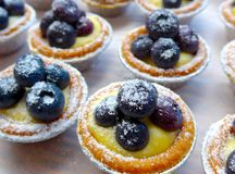 The close view of blueberry tarts Stock Image
